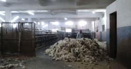 産業革命の時代を彷彿とさせるインドの紡績工場に行ってきました!