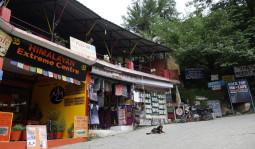 バックパッカーの聖地マナリ – ヒマラヤの魅力が詰まった街