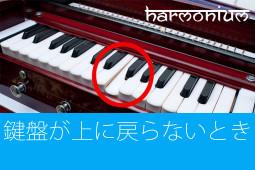 ハルモニウム修理方法 鍵盤が上がらない(戻らない)とき