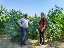 インドの辺境で、ひまし油の産地を訪問する
