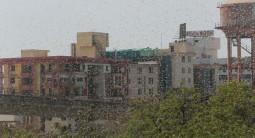 ジャイプールにサバクトビバッタの大群が来襲