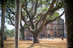 Road to Goa – 黄金のゴアへ